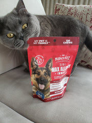 Grey cat fetching the packaging