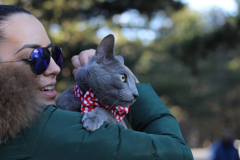woman in the sunglasses hugging grey cat outside