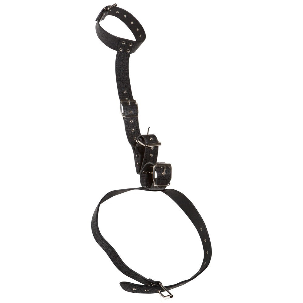 Neck And Hand Restraints