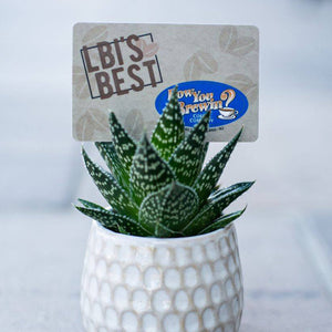 How You Brewin® In-Store Gift Card