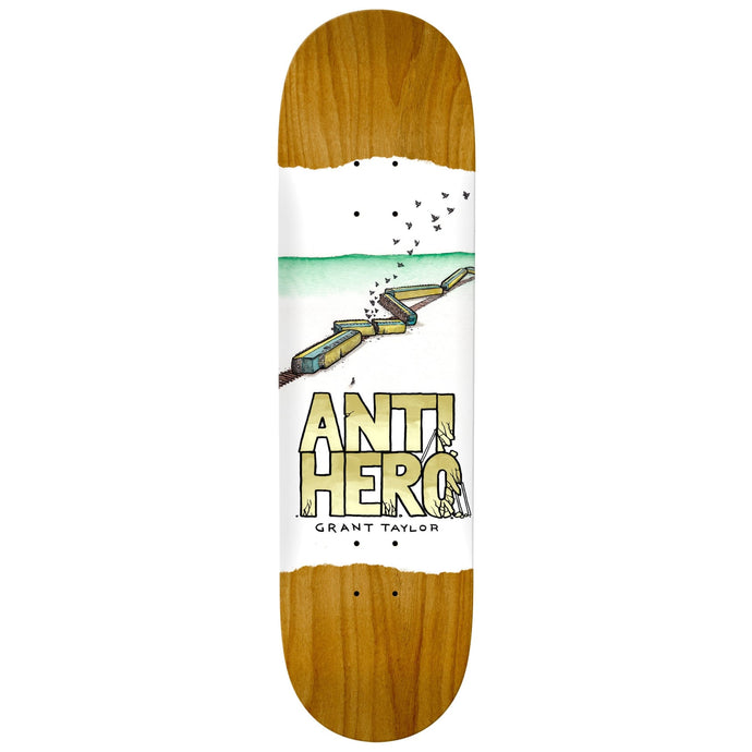 Anti Hero Grant Taylor Expressions Deck Assorted Stains