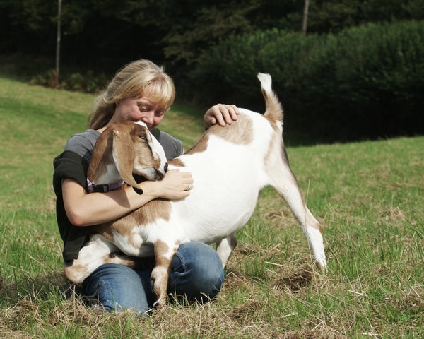 Amy with one of the goats, the Raw Soap Company