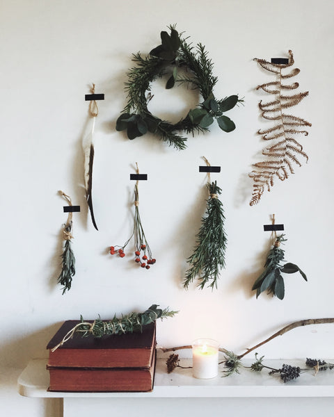 Simple nature finds for Christmas on wall at Lewes Map Store studio.