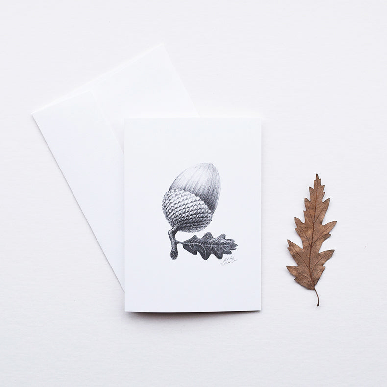 'Acorn' greeting card, designed and printed in the UK, features one of the original pencil drawings from the 'Technature' range by Malcolm Trollope Davis.