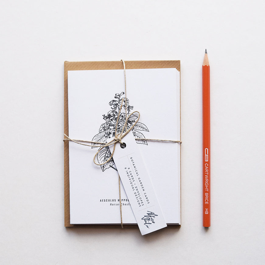 This set of eight greeting card designs by Alfie's Studio is inspired by Victorian botanical illustrations and vintage apothecary style. Each card is printed on a crisp white background and comes with a craft envelope.