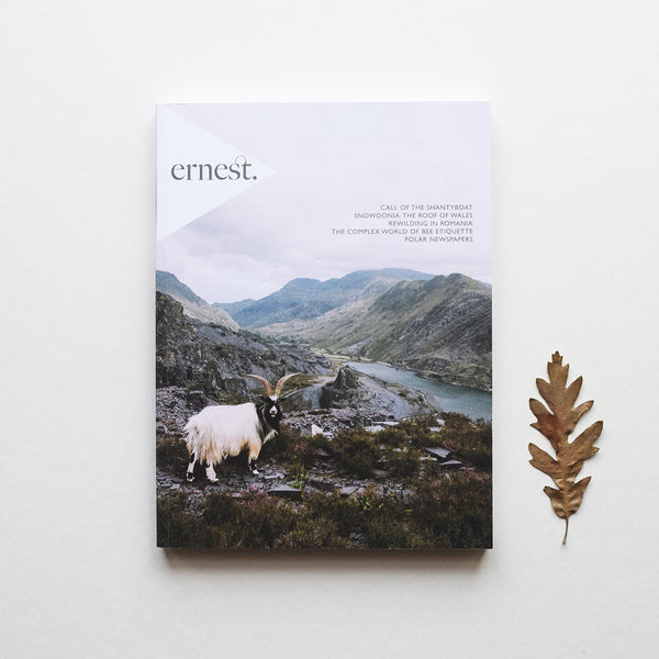 Ernest, issue number 8 is all about rewilding in Romania; shanty boats; the peculiar world of bee etiquette; Snowdonia's mountain haunts; adrift in the Atlantic; the adventures of stødig; immortal trees; a history of bitters; otherworldly sand dunes; newspapers at the ends of the earth.