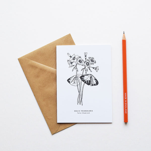 Inspired by Victorian botanical illustrations and vintage apothecary style this beautiful False Shamrock drawing is one of a set of eight greeting card designs by Alfie's Studio. It is printed on a crisp white background and comes with a craft envelope.