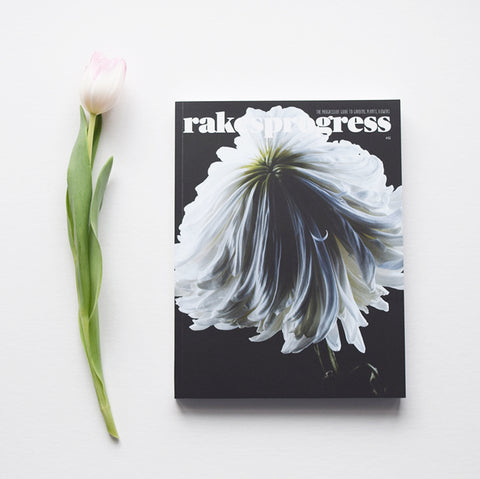 Rakesprogress is one of the most creative, innovative and beautiful gardening magazines in the UK. Issue 6 is now available from Lewes Map Store. Rakesprogress, the progressive guide to gardens, plants, flowers and people.