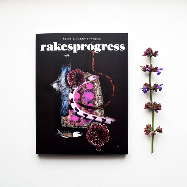 Rakesprogress Magazine Issue 11 features a beautiful cover by photographer Kevin Mackintosh, contains the usual eclectic mix of features and outstanding photography including the work of Celia Pym who's passion for darning makes art out of socks.