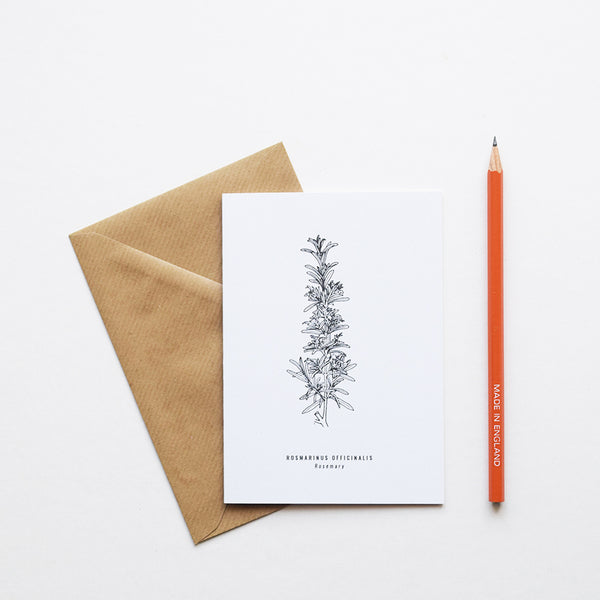 Greeting cards inspired by Victorian botanical illustrations and vintage apothecary style | This beautiful Rosemary drawing is one of a set of eight greeting card designs by Alfie's Studio stationery range. It is printed on a crisp white background and comes with a craft envelope.