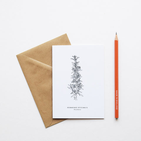 nspired by Victorian botanical illustrations and vintage apothecary style this beautiful Rosemary drawing is one of a set of eight greeting card designs by Alfie's Studio stationery range. It is printed on a crisp white background and comes with a craft envelope.