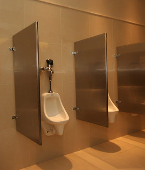 "BEWHUS 18"" & 24""  -  Powder Coated Wall Hung Urinal Screen"