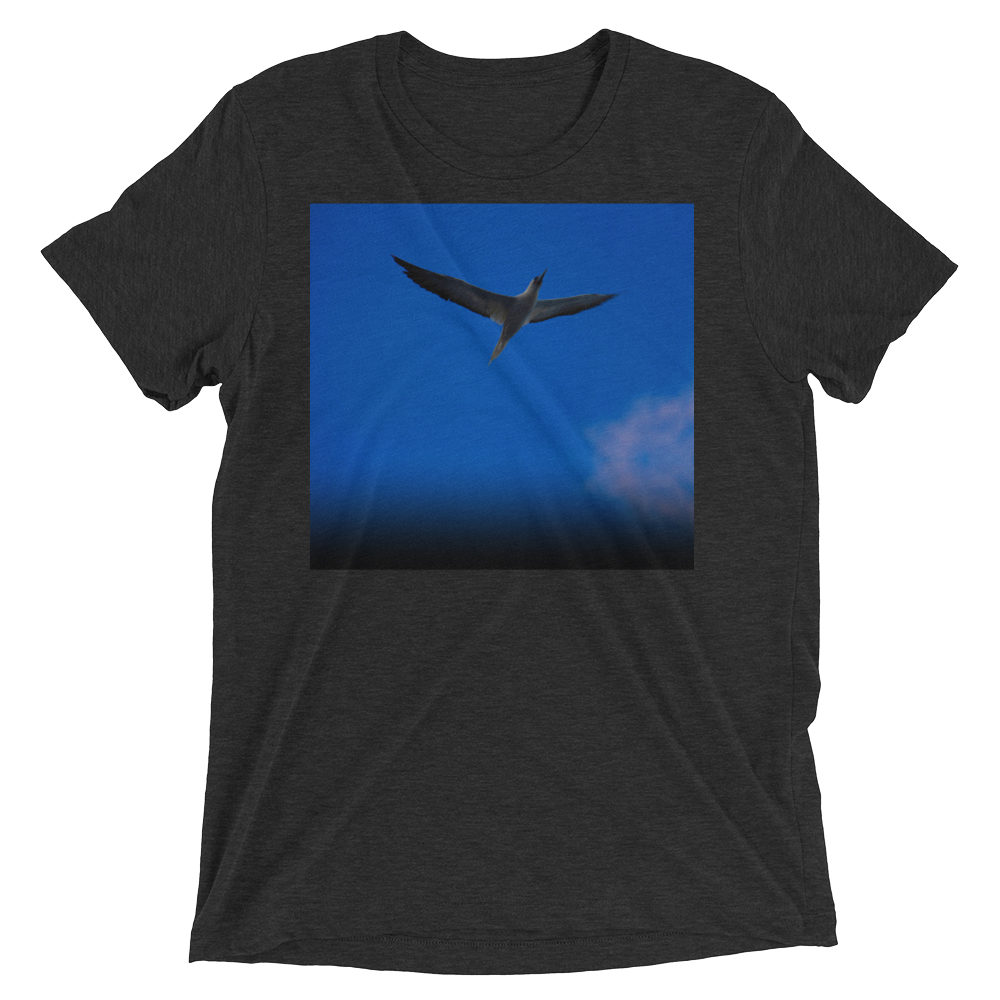 """Blue Bird"" - Charcoal-Black Triblend - Beachwear by Space Is Black Apparel"