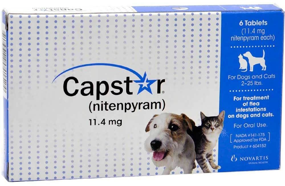 How to Treat Fleas With Capstar for Kittens Under 2 lbs