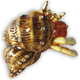 Hermit Crab Jeweled Trinket Box with SWAROVSKI Crystals