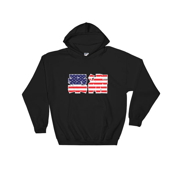 American Flag Kanji Jiu Jitsu Hooded Sweatshirt - NoGi USA