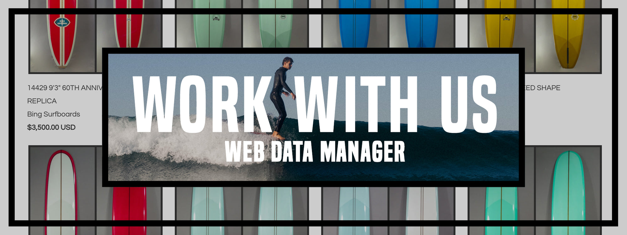 We Are Hiring! Web Data Manager