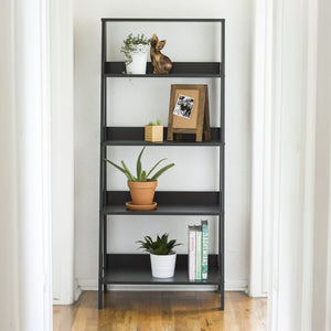 Tall Ladder Shelf