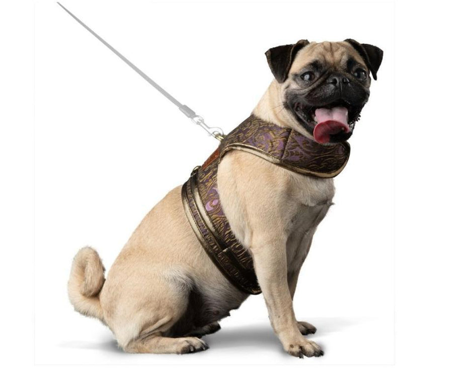 dog harness, prince harness, walk wear