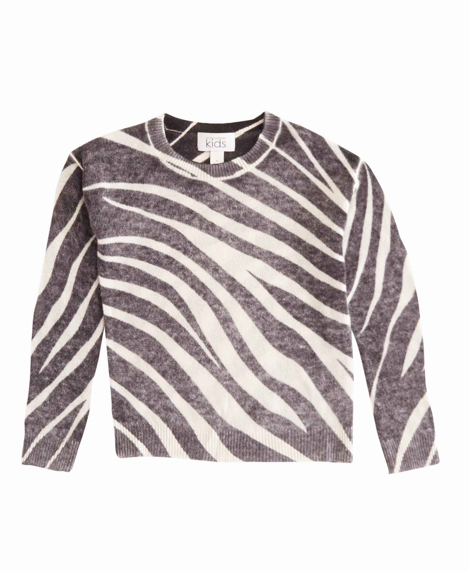 Autumn Cashmere Zebra Stripe Sweater