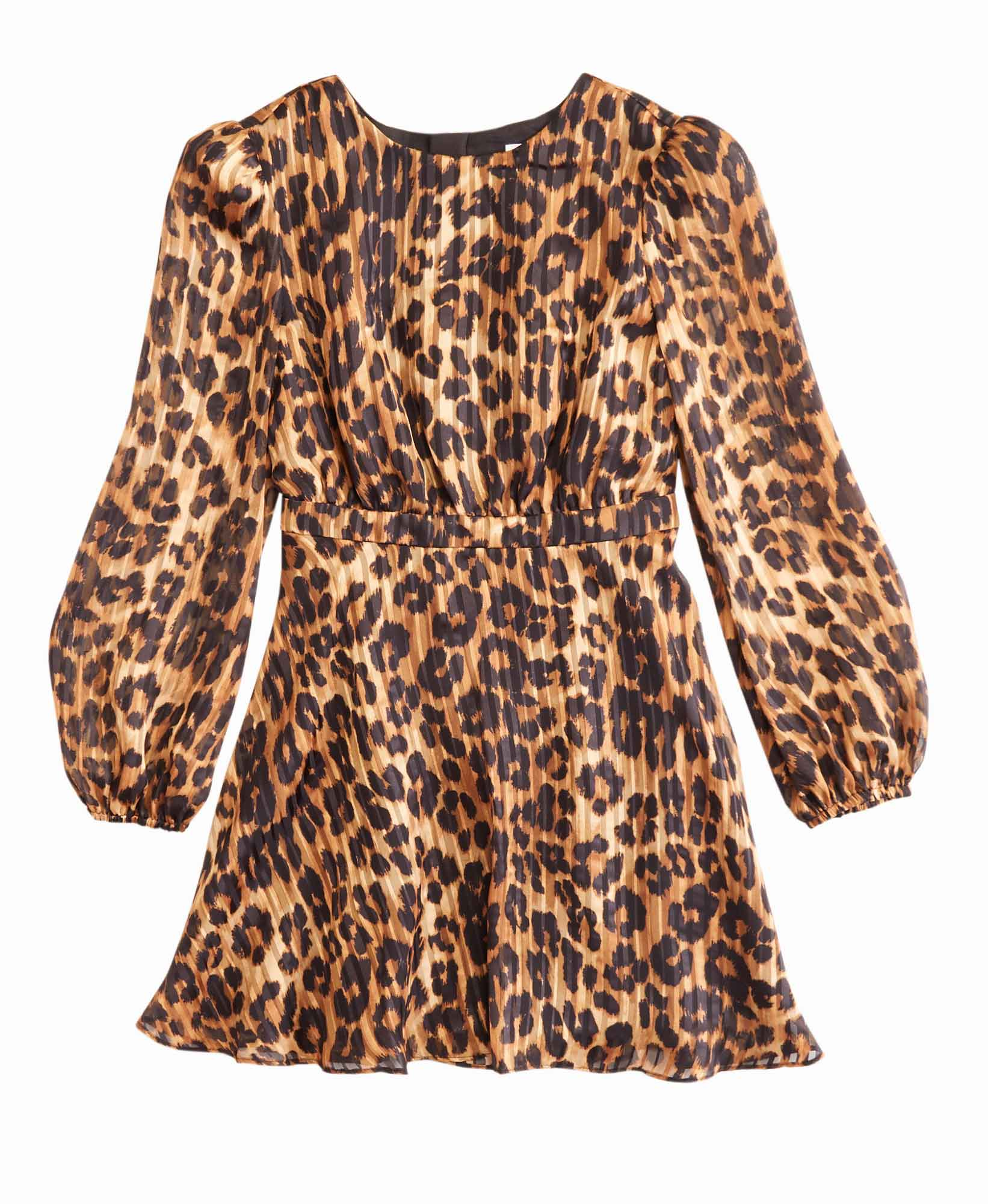 Milly Elma Cheetah Dress