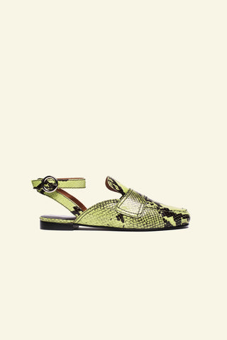 jay / lime embossed snakeskin