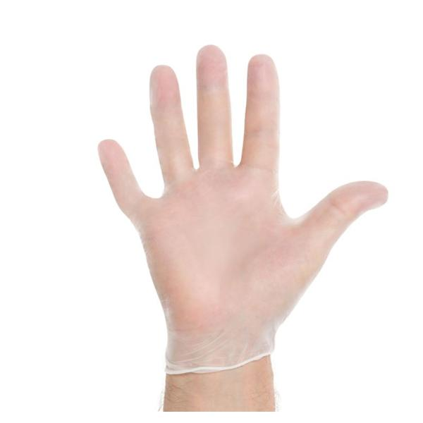 Clear Vinyl Powder Free Exam Gloves - CASE