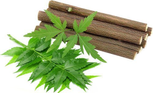10 Chewing Sticks Of NEEM DATUN ORAL HERBAL TEETH & TONGUE CLEANER