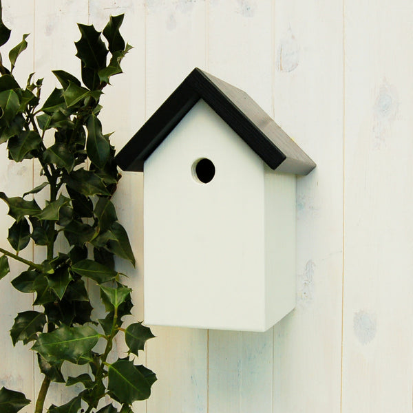 Simply Colour Bird Box - Jack Black and Grace White