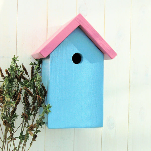 Simply Colour Bird Box - Pretty Pink and Blue Verditer