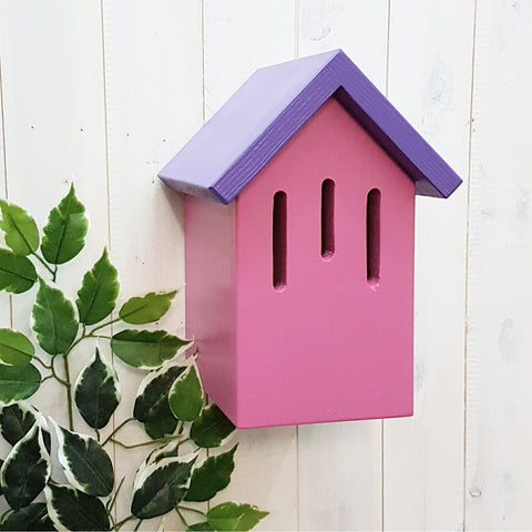Simply Colour Butterfly Box - Palatine Purple and Boo Pink