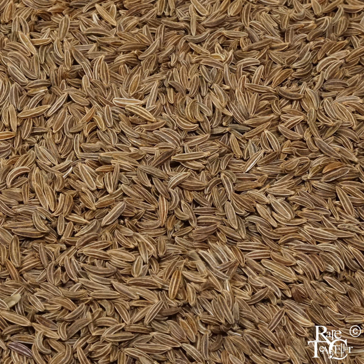 Caraway Seeds | Rare Tea Cellar