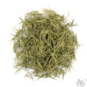 High Mountain Bamboo Leaves - Rare Tea Cellar