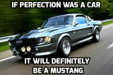Eleanor Tribute - Shelby GT500 Mustang