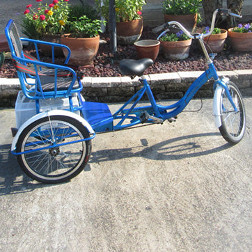Buddy Trike for Family Fun