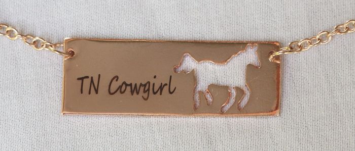 SPECIAL OFFER! TN Cowgirl Necklace  FREE! Just pay shipping.
