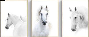 Majestic White Horse Wall Art, individual or set