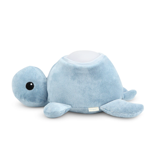 Turtle - Blue [Arriving August] - Wellness Home and Life
