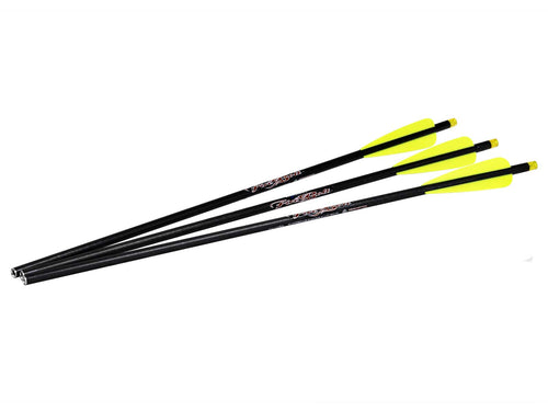Excalibur Firebolt Illuminated Carbon Arrows / 3 Bolts