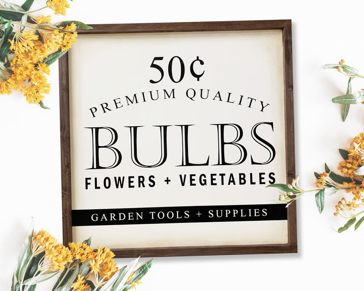 Premium quality bulbs