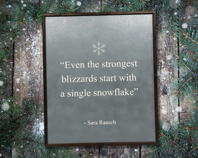 Even the strongest blizzards start with a single snowflake -Sara Raasch