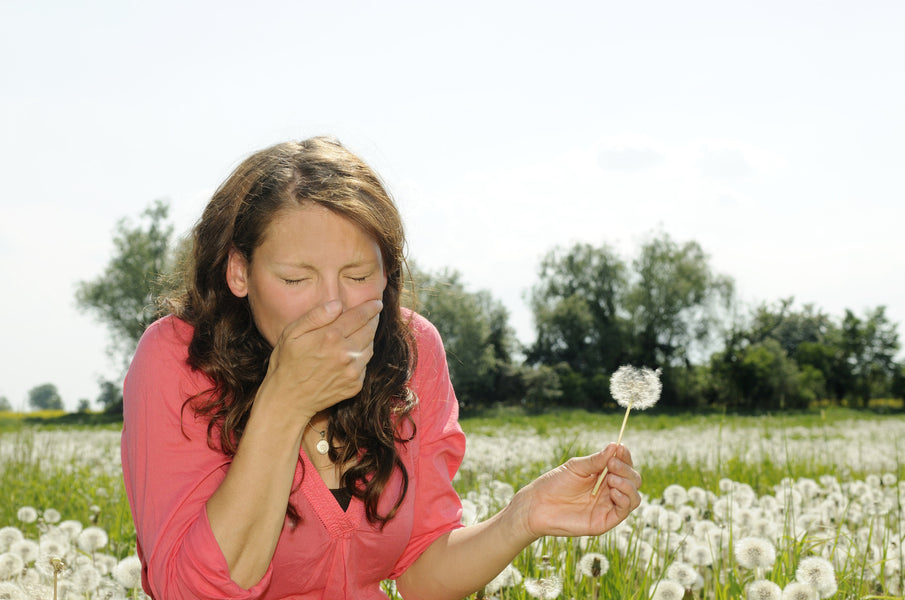 Dealing with Contact Lenses During Allergy Season