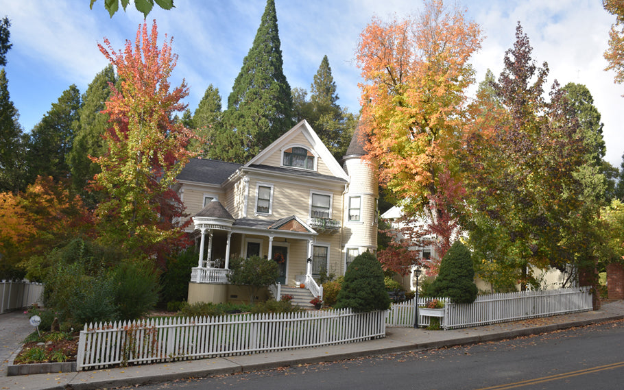 Autumn in Nevada City
