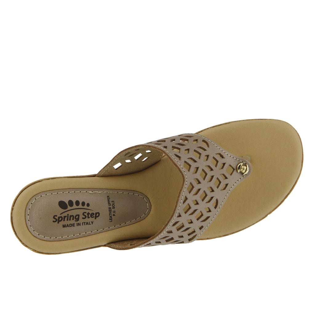Spring Step Amerena (Gold)