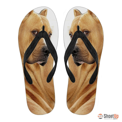 Pitbull Women Flip Flops- Free Shipping