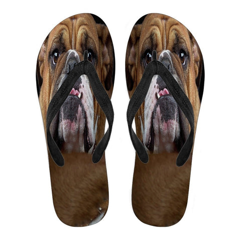 Bulldog Men Flip Flops - Free Shipping