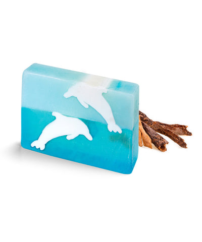 Jumping Dolphins Block Soaps