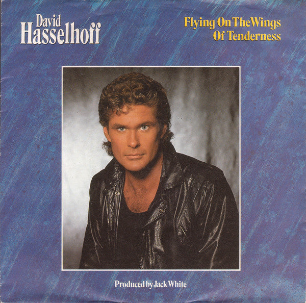David Hasselhoff ‎– Flying On The Wings Of Tenderness