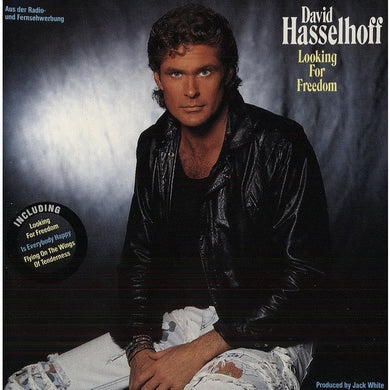 David Hasselhoff Looking for Freedom