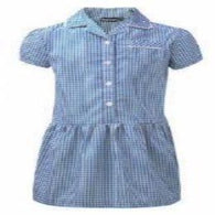 Blue Gingham Dress Button Front